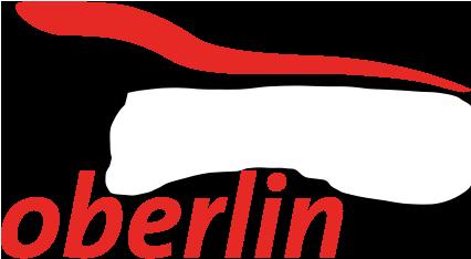 Garage Oberlin, Freienbach – Honda und Hyundai